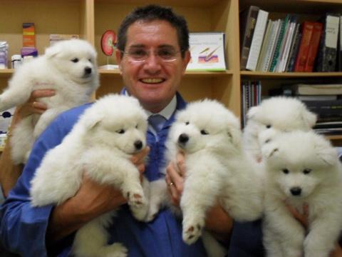 45 фотографий о преимуществах работы ветеринаром