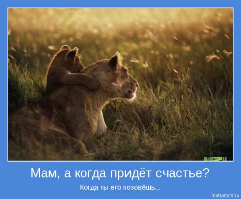Животные улыбаются! (позитивные картинки)