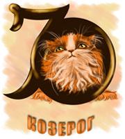 Кошачий гороскоп. Кошка Козерог