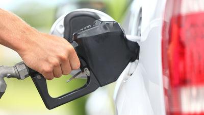 Дворкович: цены на бензин не…