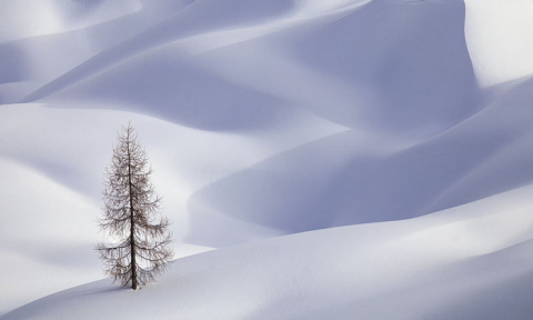 ФОТОВЫСТАВКА. Красота природы