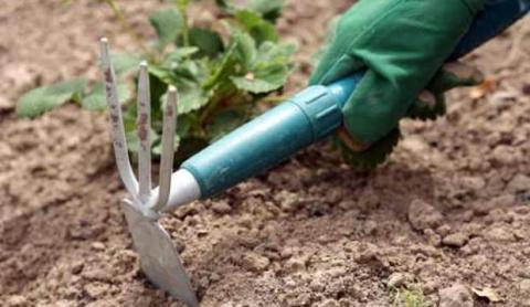 Промыв почвы и рыхление