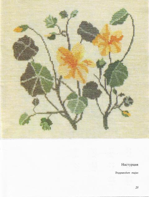 Вышитый гербарий