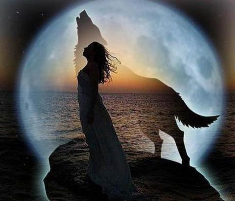 Хозяйка и волчица