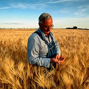 Фото агронома в поле для детей