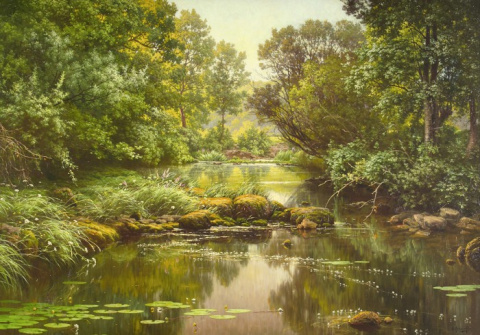 Игра света и воды в лесных пейзажах