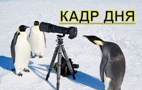 Кадр дня: Спортсмены!))