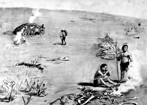 Кроманьонцы Русской Равнины (часть 1): Венера из Костёнок (Где в Европе появился первый НОМО SAPIENS?)