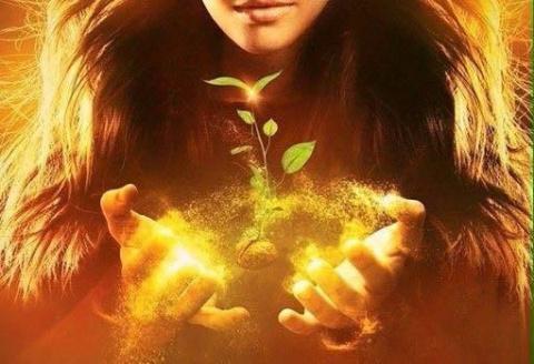 Магические ростки удачи и достатка