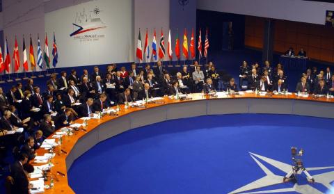 Вспышка ярости НАТО. Действия НАТО продиктованы страхом