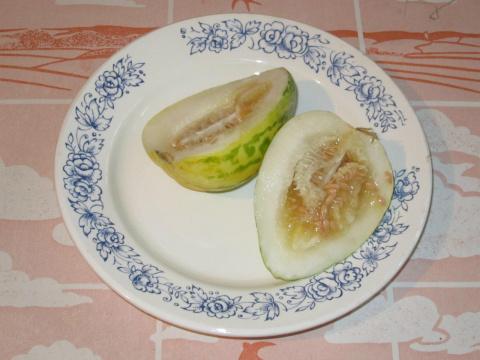 Огурдыня: в зеленом виде – на обед, а как поспеет – на десерт