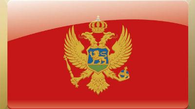 Черногория закрыла въезд Дми…