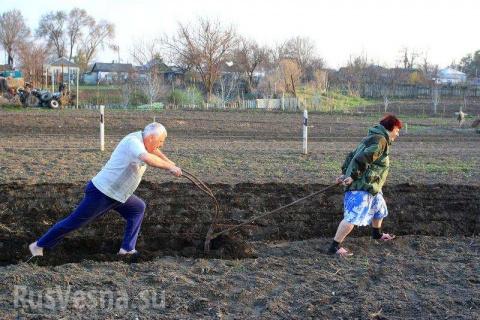 На правах скота. Как украинские крестьяне превратились в батраков