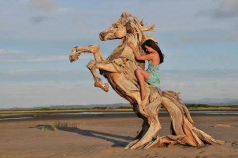 Удивительные работы из дерева, выловленного в океане