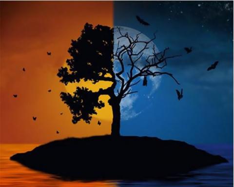 НЕМНОГО О ЖИЗНИ И СМЕРТИ  СКАЗКИ ЭЛЬФИКИ