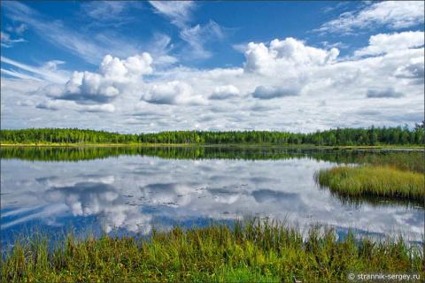 Мир красоты затерянного края лесов и болот в начале осени