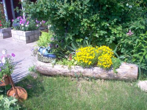 Идеи оформления сада