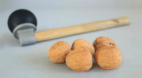 HАMMER для орехов