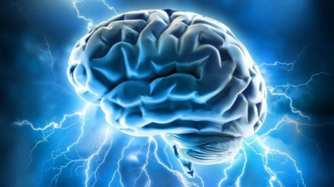 16 мозговыносящих вещей, сви…