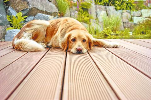 9 самых популярных видов материалов для покрытия террасы