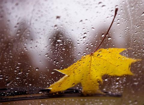 Вальс Дождя от Михалыча!