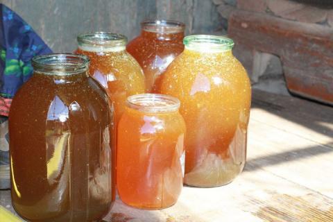Как получают мёд (22 фото)