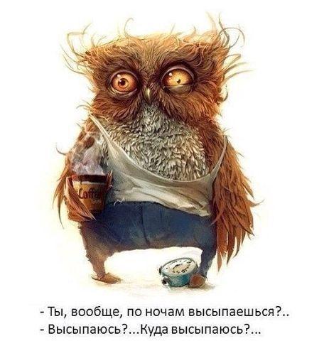 http://mtdata.ru/u25/photo3C28/20829635403-0/big.jpeg