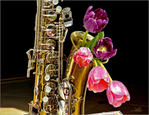 Весенний саксофон!
