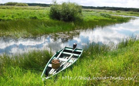 По грибы на лодке