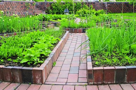 Огородные затеи. Как сделать дорожки и аккуратные грядки на вашем участке