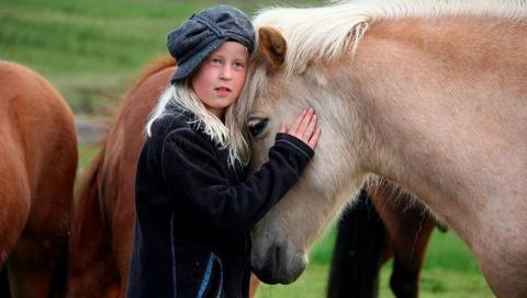 Лошади способны понимать эмоции человека