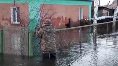 Спасение кошки из затопленного двора