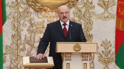 В Белоруссии уничтожили тира…