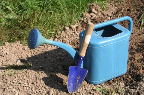 Открываем посевную. Какие работы можно делать в саду в апреле