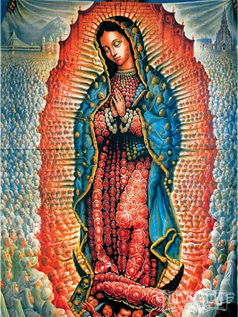 Lady guadalupe