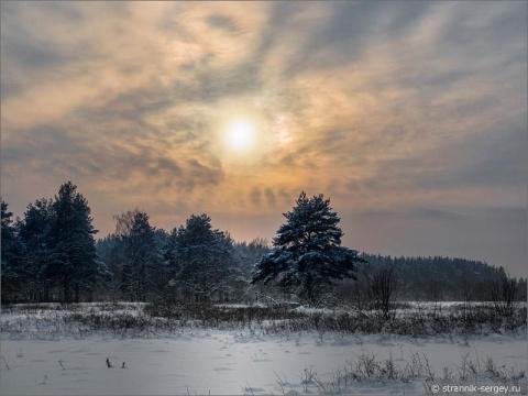 Красивая лыжня