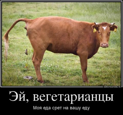 Вегетарианство - зло.