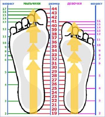 ПАМЯТКА. Размеры детской обуви