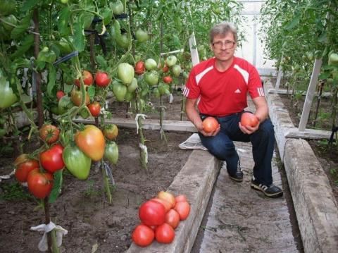 Чудесная подкормка для растений