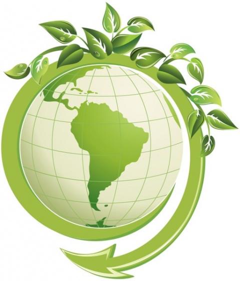 ecologia Плотников
