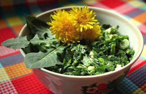 Съедобные сорняки - лучшие помощники в борьбе с авитоминозом