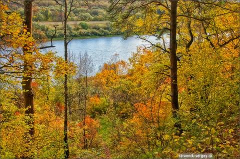 Фотографии для души. Золотая осень в Поленово