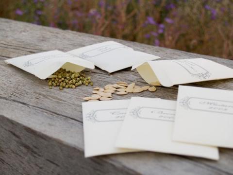Семена со знаком… брака