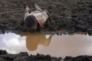 Миллионы людей в Африке стра…
