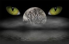 Черная магия.Ритуалы возмездия и наказания
