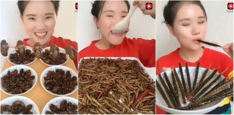 Девушка из Китая жрет насеко…