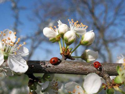 Весна пришла! Как выбраться из «зимней спячки»?