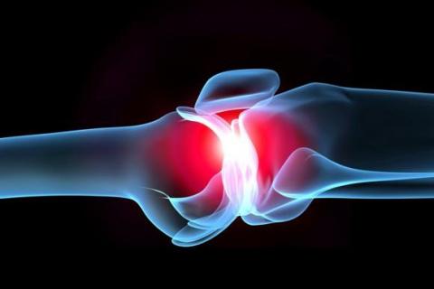 Лечение суставов с помощью ж…