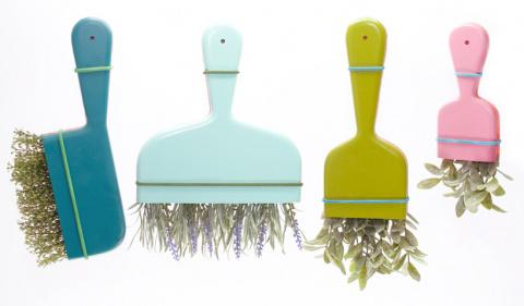 Натуральные травы и специи в помощь при уходе за домом