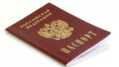 Медведев сократил срок выдач…